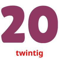 twintig picture flashcards