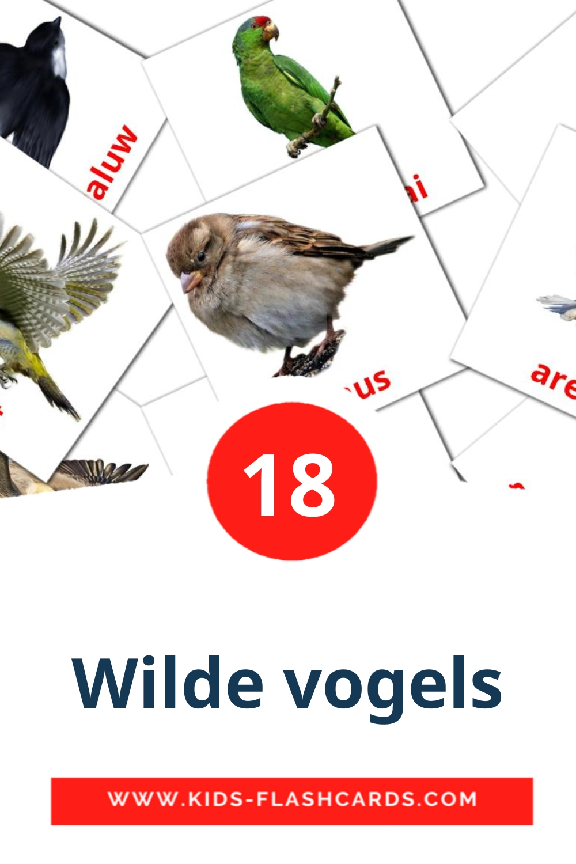 18 Wilde vogels Picture Cards for Kindergarden in dutch