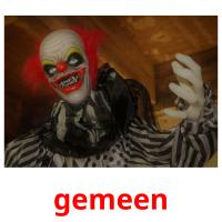 gemeen picture flashcards