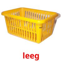 leeg picture flashcards