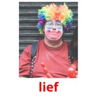 lief picture flashcards