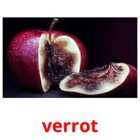 verrot picture flashcards