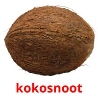 kokosnoot picture flashcards