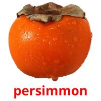 persimmon picture flashcards
