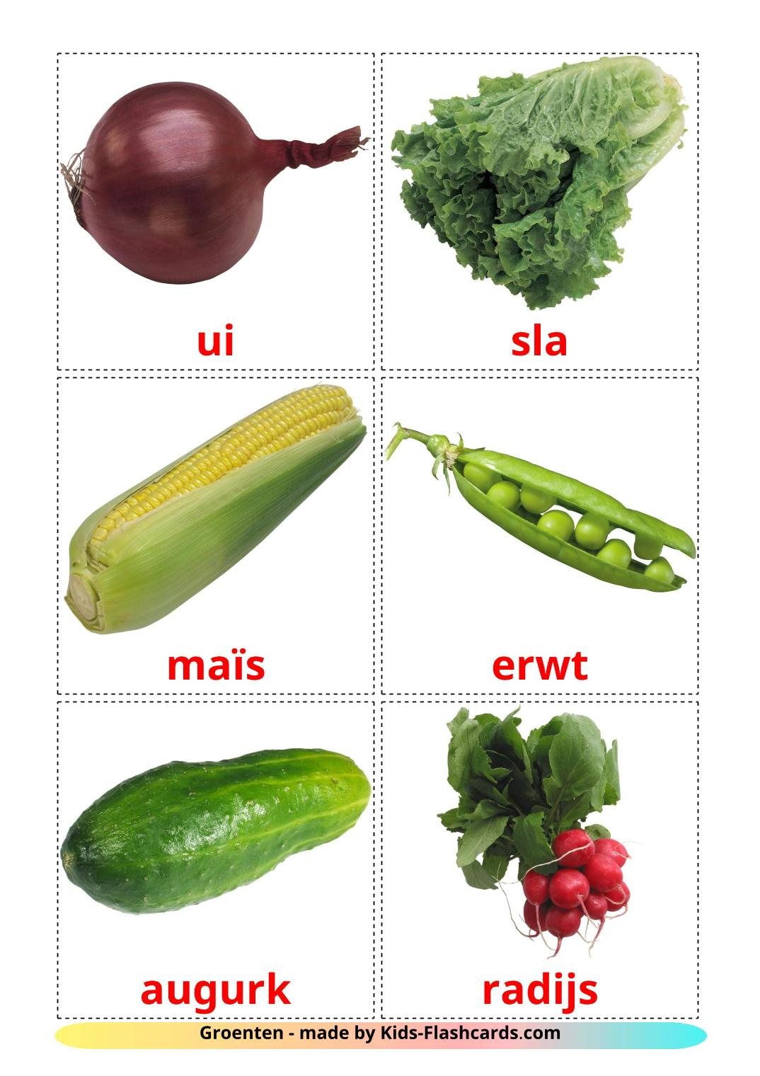 Vegetables - 29 Free Printable dutch Flashcards