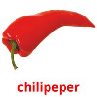 chilipeper picture flashcards