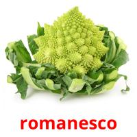 romanesco picture flashcards