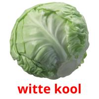 witte kool picture flashcards