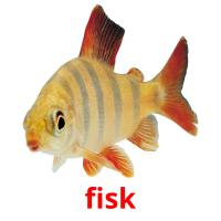 fisk picture flashcards