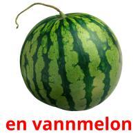 en vannmelon picture flashcards