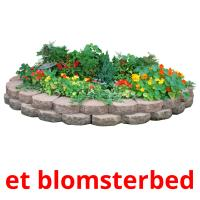 et blomsterbed picture flashcards
