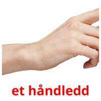 et håndledd picture flashcards