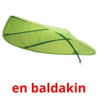 en baldakin picture flashcards