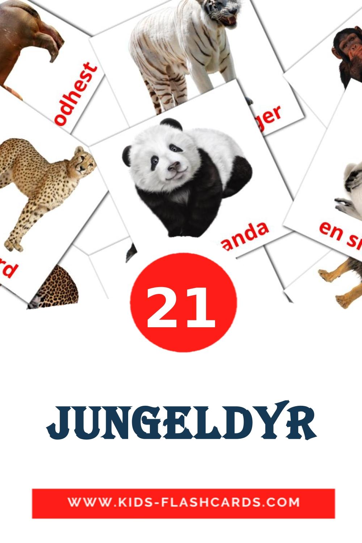 21 Jungeldyr Picture Cards for Kindergarden in norwegian