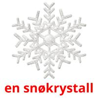 en snøkrystall picture flashcards