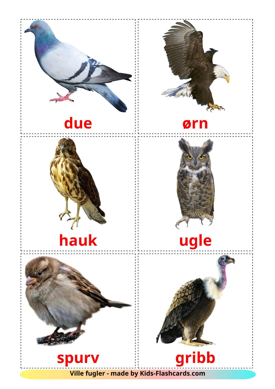 Wild birds - 18 Free Printable norwegian Flashcards