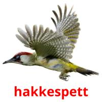 hakkespett picture flashcards