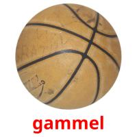 gammel picture flashcards