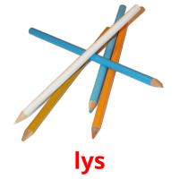 lys picture flashcards