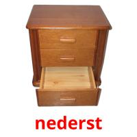 nederst picture flashcards