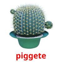 piggete picture flashcards