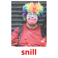 snill picture flashcards