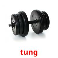 tung picture flashcards