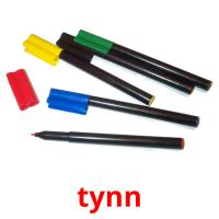 tynn picture flashcards
