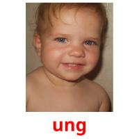 ung picture flashcards