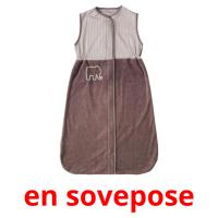 en sovepose picture flashcards