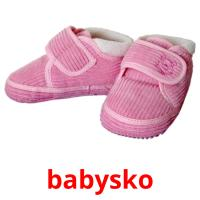 babysko picture flashcards