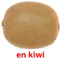 en kiwi picture flashcards