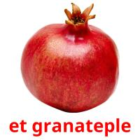 et granateple picture flashcards