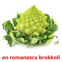 en romanesco brokkoli picture flashcards