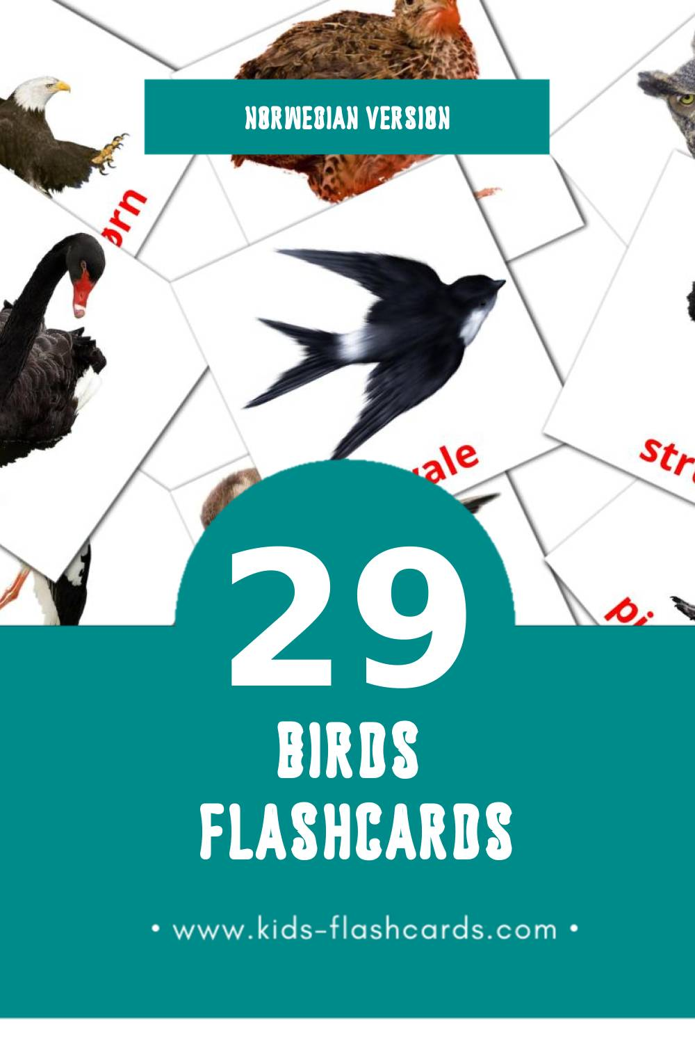 Visual Fugler Flashcards for Toddlers (18 cards in Norwegian)