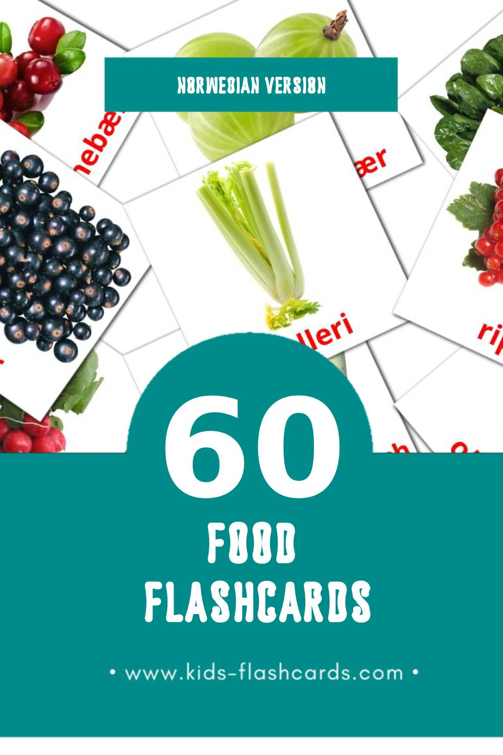 Visual mat Flashcards for Toddlers (60 cards in Norwegian)