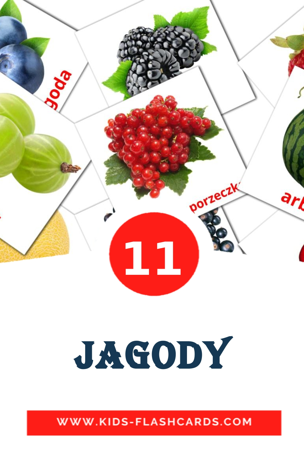 11 Jagody Picture Cards for Kindergarden in polish