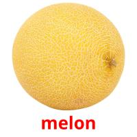 melon picture flashcards