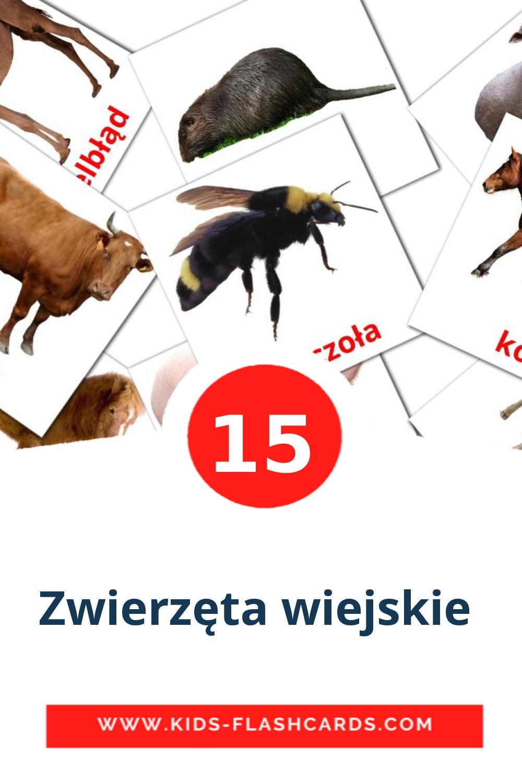 15 Zwierzęta wiejskie  Picture Cards for Kindergarden in polish