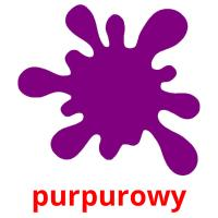 purpurowy picture flashcards