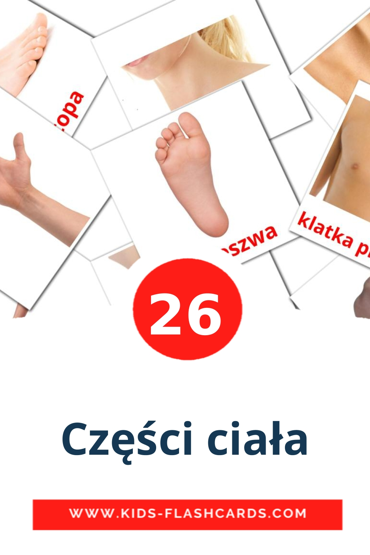 26 Części ciała Picture Cards for Kindergarden in polish