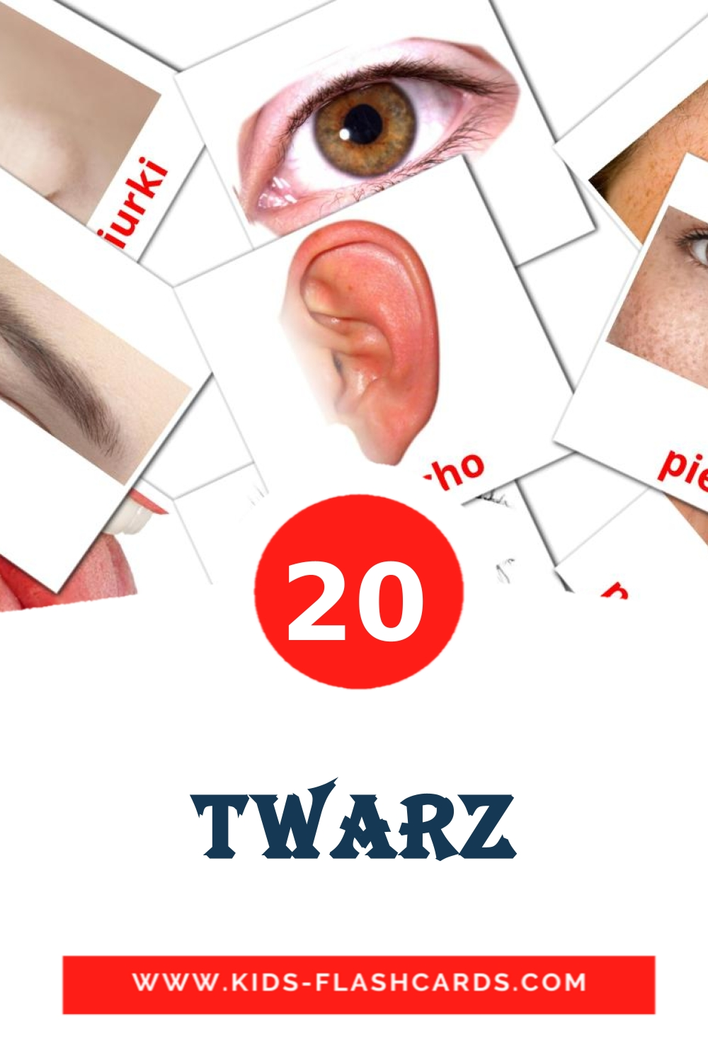 20 Twarz Picture Cards for Kindergarden in polish
