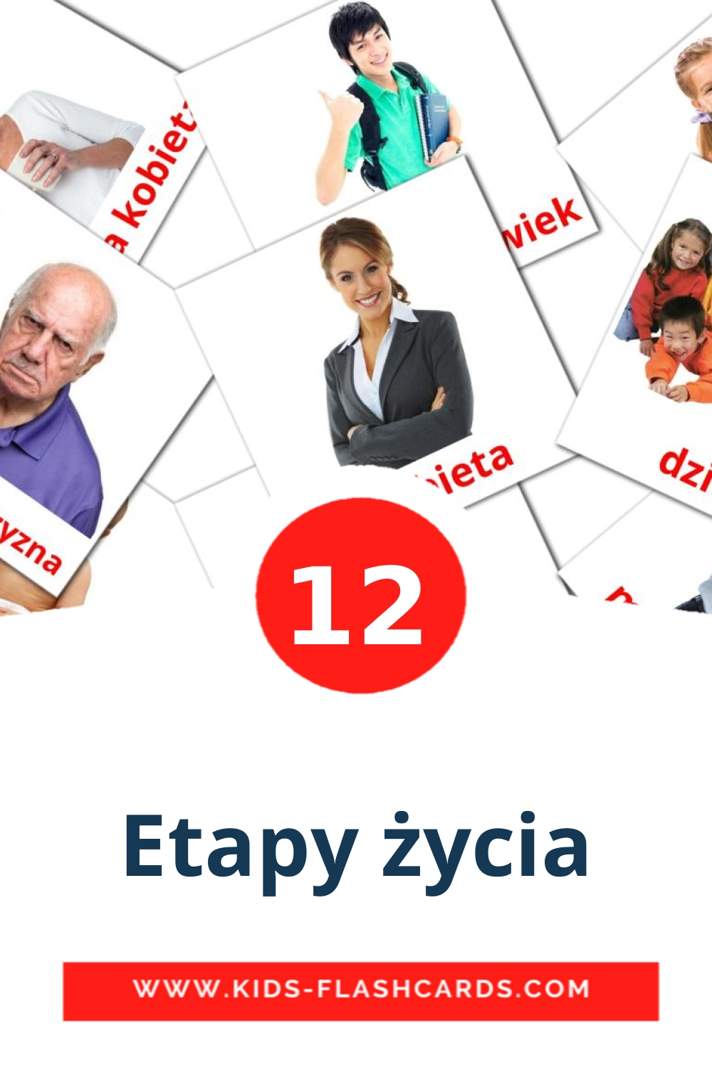 12 Etapy życia Picture Cards for Kindergarden in polish