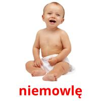 niemowlę picture flashcards