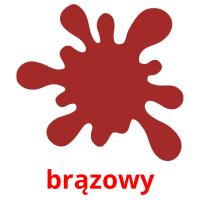 brązowy picture flashcards
