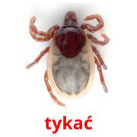 tykać picture flashcards