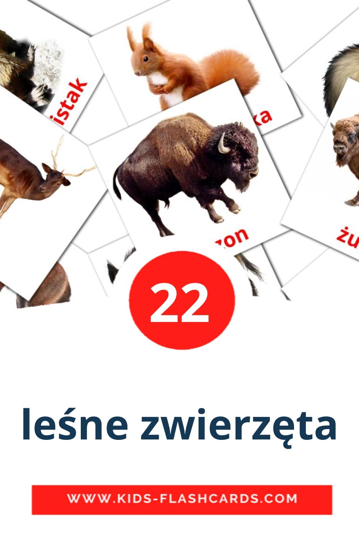 22 leśne zwierzęta Picture Cards for Kindergarden in polish