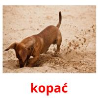 kopać picture flashcards
