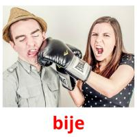 bije picture flashcards