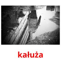 kałuża picture flashcards